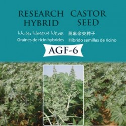hybrid_castor_agf-6