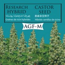 hybrid_castor_agf-M